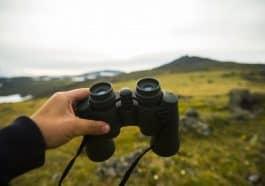 Best Binoculars featured image