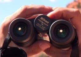 Nikon Prostaff 7s 10x42 Binoculars featured image