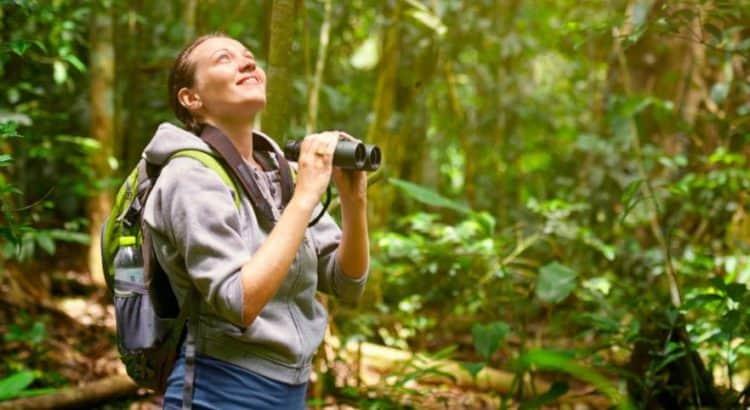 Best Bird Watching Binoculars
