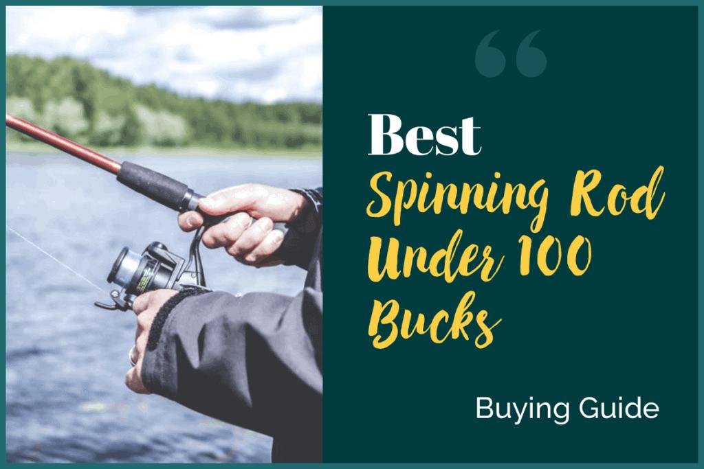 Best Spinning Rod Under 100 Bucks