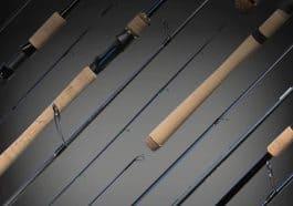 best spinning rod under 100