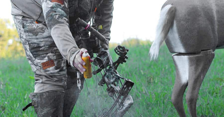 10 tips to get that Big Buck - use attractants
